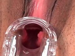 Amateur, Big Cock, Big Tits, Blowjob, Cumshot, Cunnilingus, Fetish, Fucking, Gyno,