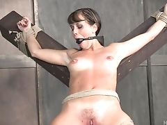 BDSM, Bondage, Fetish, Kinky, Master, Torture,