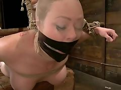 Audrey Hollander, BDSM, Whore,
