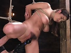 Babe, Big Tits, Bondage, Domination, Forced Orgasm, Gloves, Helpless, Maledom, Natural Tits, Shaved Pussy,