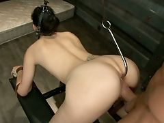 BDSM, Bobbi Starr, Brunette, Deepthroat, Hardcore, Humiliation, Nacho Vidal, Punishment, Rough, White,