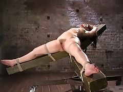 BDSM, Bondage, Domination, Fingering, Gabriella Paltrova, Jerking, Moaning, Nipples, Pussy, Rough,