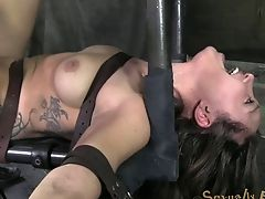 BDSM, Curly, Fetish, Torture, Wedding,