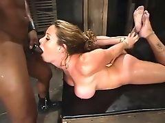 BDSM: 1075 Videos